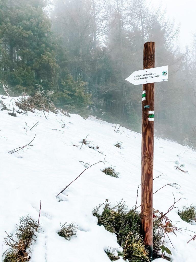 Bieszczady - Zielony szlak na Połoninę Caryńską