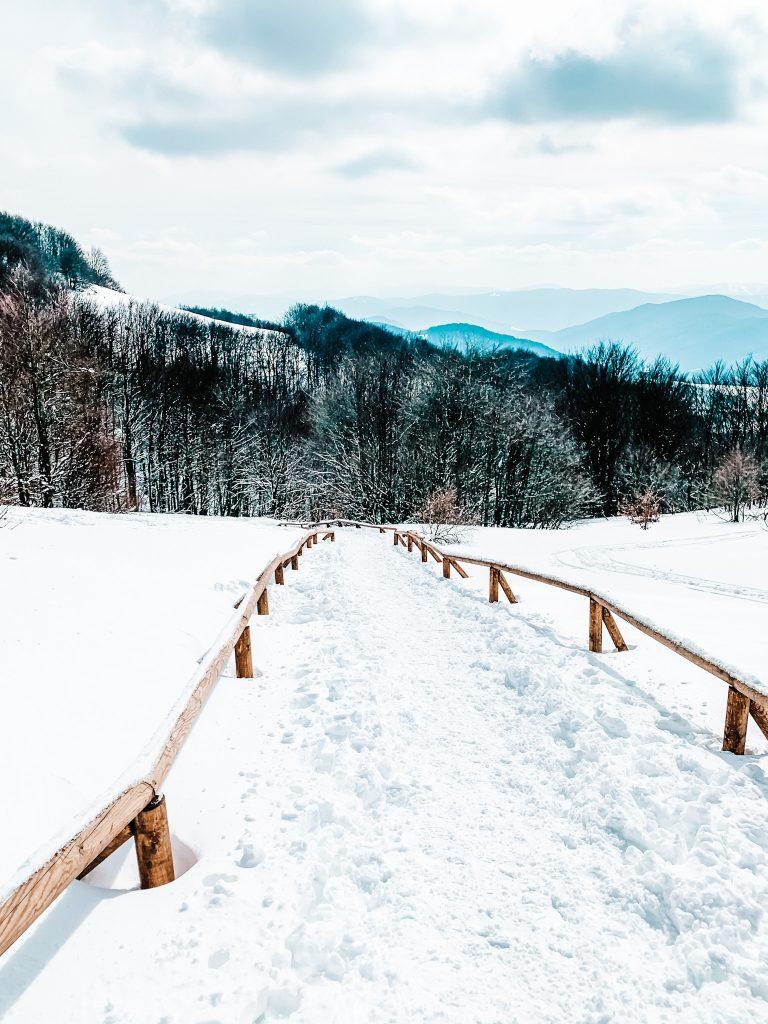 Oznaczenie szlaku na Tarnicę