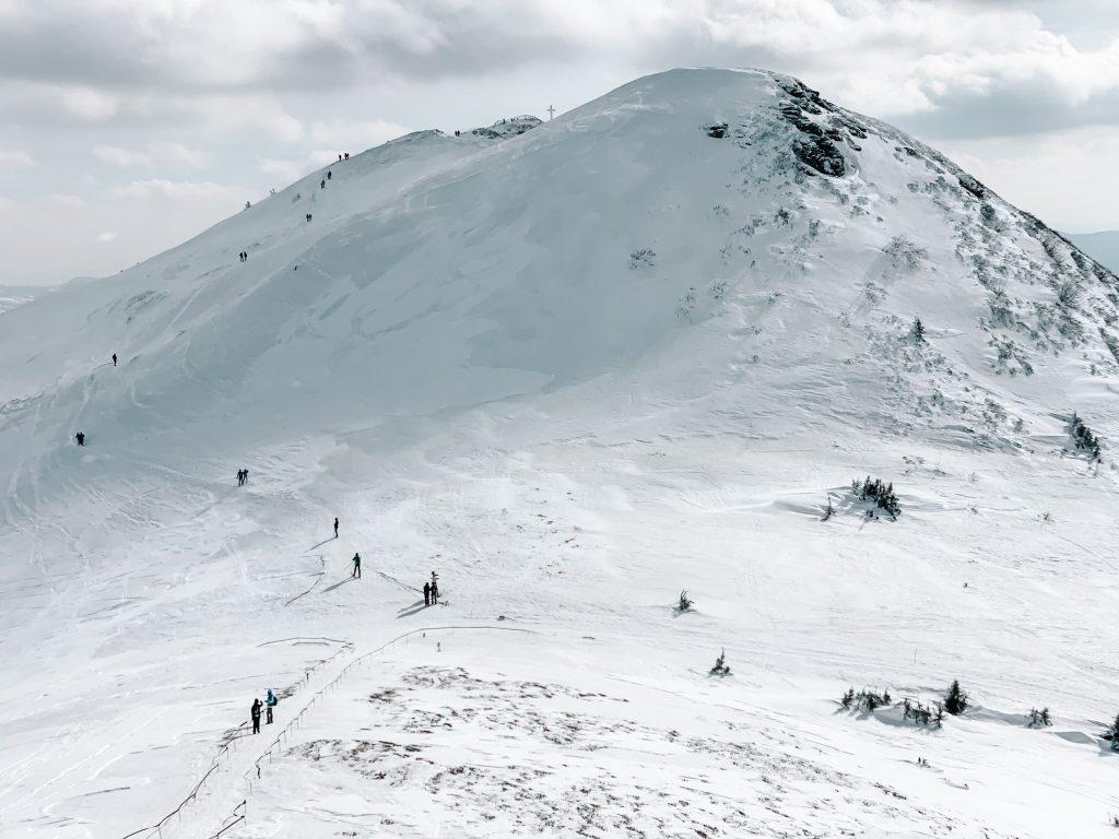 Widok na Tarnicę z pobliskiego szczytu