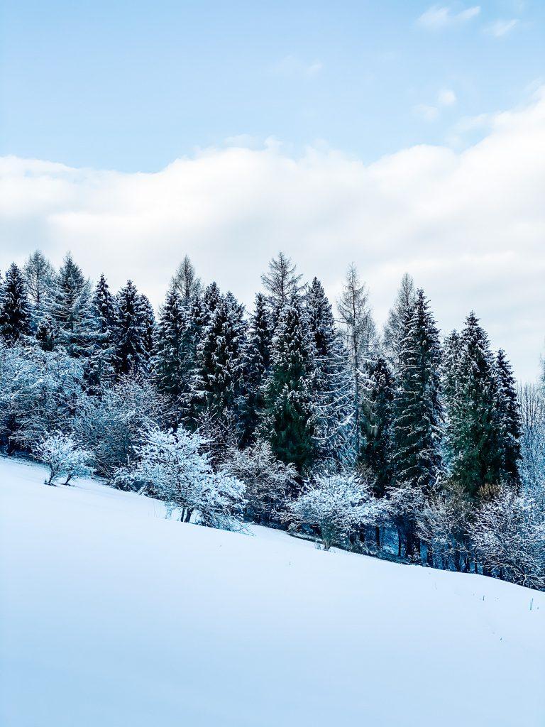 Winter wonderland w pełnej krasie