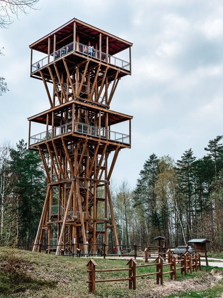 Łuk Mużakowa - Wieża widokowa
